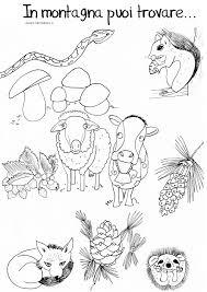 Disegno Da Colorare Animali Della Montagna Disegni Mammafelice