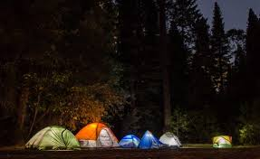 camping in the woods at night. Six Camping Tents In Forest The Woods At Night