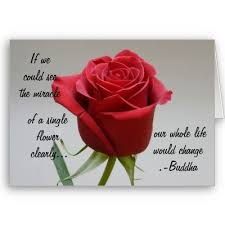 Beautiful Red Rose Quotes Best Of Images Friends Quotes Beautiful Images Of Friendship