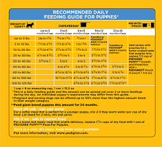Bottle Feeding Puppy Chart 46 Particular Food Chart For Puppies