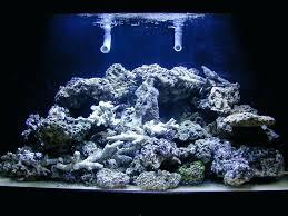 r tank lighting guide simple effective reef news builders the marine aquarium blog led