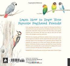 amazon drawing cute birds in colored pencil 9781631592652 ai akikusa books
