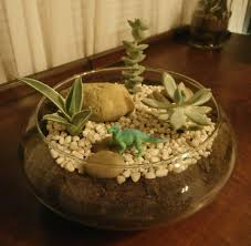 Aloe, crassula, and echeveria with dinosaur and rocks in glass bowl.