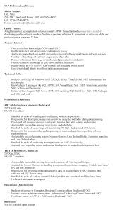 Sap B1 Technical Consultant Resume Professional Resume Templates