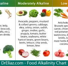 Plant Based Diet Chart Dr Sebi Diet Plan Dr Sebi Plant Based Diet And Electric