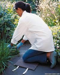 Kitchen Garden Trough Vegetable Garden Good Things Martha Stewart