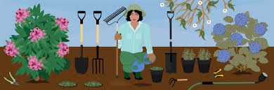 what gardening tools a beginner needs