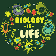 Big Ideas In Biology Chart Answers Advanced Placement Biology Ms Harts Scholars