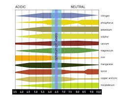 Cannabis Ph Chart Marijuana Garden Saver How To Identify And Treat Cannabis