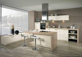 Small Picture Creative of Modern White Wood Kitchen Cabinets Pictures Of