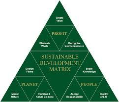 environmental ethics essay questions environmental ethics  environmental ethics essay questions
