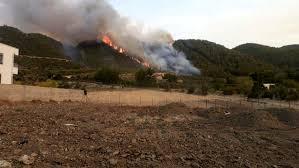 Son dakika haberleri Osmaniye'de ikinci orman yangını - Son Dakika