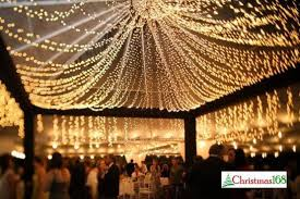 fairy-lights-for-events-canopy