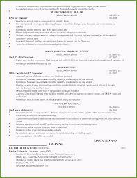 Plain Text Resume Template Plain Text Resume Format Unique Models Plain Text Resume Generator