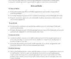 Technical Skills List Resume For Functional It Director