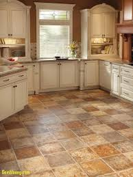 kitchen best flooring for ideas including fascinating kitchens pictures and bathroom bath