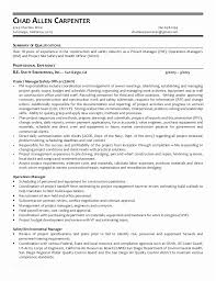 Carpenter Assistant Sample Resume Enchanting Carpenter Resume Objective Famous Sample Resume Carpenter Assistant