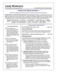 Online Resume Writing Free Sample Essay And Resume Professional Resume  Writing