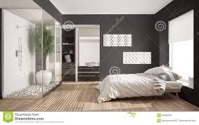 Unbedeutendes Schlafzimmer Und Badezimmer Mit Dusche Und Begehbarem