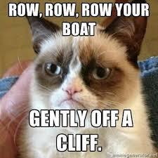 Fun Friday – Angry Cat Memes! | Dusty Crabtree via Relatably.com