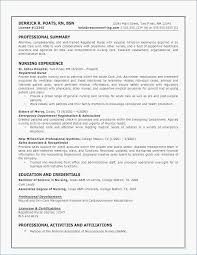 Contemporary Resume Examples 40d Skills Resume Examples Resume Adorable Resume Critique