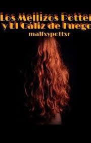 Los Mellizos Potter Y el Cáliz De Fuego - Aviso - Wattpad