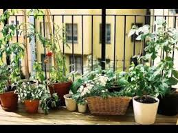 Small Picture Small balcony garden ideas YouTube