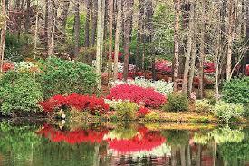 callaway garden hotel. Callaway Gardens Plans Layoffs, 10-day Closure To Cut Costs Garden Hotel
