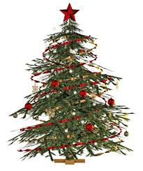 With these christmas tree png images, you can directly use them in your design project without cutout. Christmas Tree Png Photo Png Arts