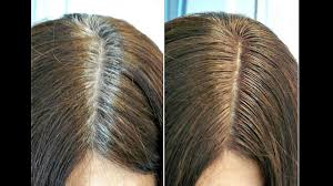 Hair Dye For Gray Roots