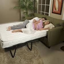Small Picture Best 25 Comfortable sleeper sofa ideas on Pinterest Best