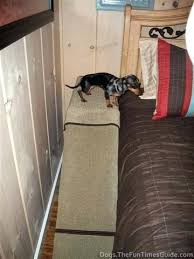 how to build a dog ramp for deck stairs yourself the guide