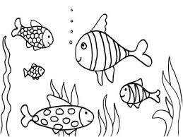 Small Picture Adult aquarium coloring page Aquarium Fish Coloring Pages Empty