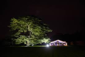 outdoor party lighting hire. hire outdoor tree lighting festoon party