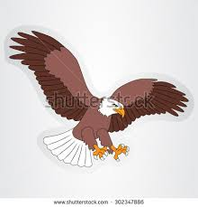Small Picture Eagle Cartoon Stock Images Royalty Free Images Vectors