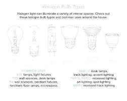 Car Bulb Types Chart Light Bulb Socket Sizes Ximenez Co