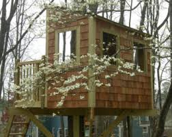 Zelkova treehouse DIY plans to fit two trees