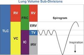 What Is A Pft Test Morgan Scientific Pulmonary Function