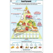 Nck Food Pyramid Chart