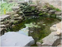 Small Picture Backyards Wondrous Backyard Designs 36 Small Garden Pond Ideas