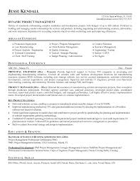 Resume Examples For Project Managers Security Project Manager