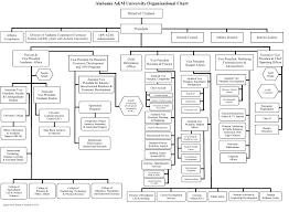 University Of Alabama Organizational Chart Aamu Organizational Chart