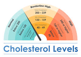How To Reduce Cholesterol To A Healthy Level In Seniors