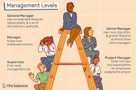 management levels and job les