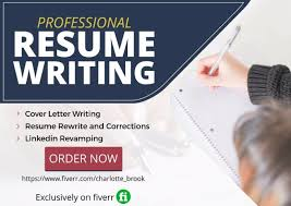 Be Your Professional Resume Writer Linkedin