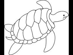 Small Picture Step by step turtle drawing for kids Basic Like Share YouTube
