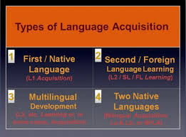 essay about language acquisition theories essay about language acquisition theories
