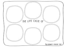Salmon Life Cycle poster & worksheets - Ladybug's Teacher Files