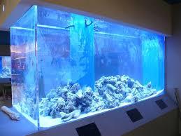 tray ceiling rope lighting alluring saltwater. custom aquarium tray ceiling rope lighting alluring saltwater