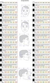 Average Head Size Chart Human Head Wikipedia